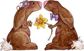 1CJO_2_hunny-bunnies copy